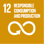 12: RESPONSIBLE CONSUMPTION AND PRODUCTION